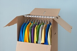 Image of Wardrobe Cartons